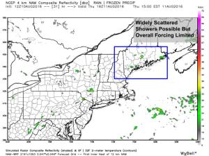 12Z 4km NAM Showing Widely Scattered Showers Possible Tomorrow. Image Credit: Weatherbell