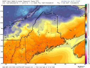 4km NAM Showing Oppressive Dew Points Tomorrow. Image Credit: Weatherbell