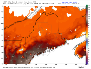 12Z 4km NAM Showing Dangerous Heat Indexes Thursday. Image Credit: Weatherbell